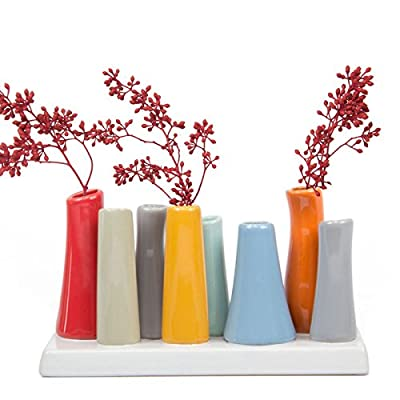 """Chive - Pooley 2, 7.25"""" Long 3"""" Wide 4.5"""" Tall Unique Rectangle Ceramic Flower Vase, Small Bud Decorative Floral Vase Home Decor Centerpieces, Arranging Bouquets, Connected Tubes (Red, Blue, Orange) - MODERN MINIMALISTIC FLORAL VASE: Chive offers another outstanding, unique and original way to decorate your house with flowers. Use it on your desk, in your living room, or on a window sill to add a pop of color and liven up a dull space. Works brilliantly as a small indoor low laying centerpiece for your dining room table. MULTI PURPOSE FLORAL ARRANGING: This is a perfect flower vase to use for artificial flower arranging and for wedding centerpieces. SIMPLE ELEGANT DESIGN: This is a Set of 8 tubes attached to the base. You can fill all 8 tubes and pop your favorite fresh cut flower in each. The Pooley 2 vase looks gorgeous with roses and tulips. - vases, kitchen-dining-room-decor, kitchen-dining-room - 514HTm%2B4CsL. SS400  -"""