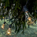 Hometown Evolution, Inc. Vintage Outdoor Patio Deck String Lights (50 Foot, PS50 Clear Bulbs - Commercial Black Cord)
