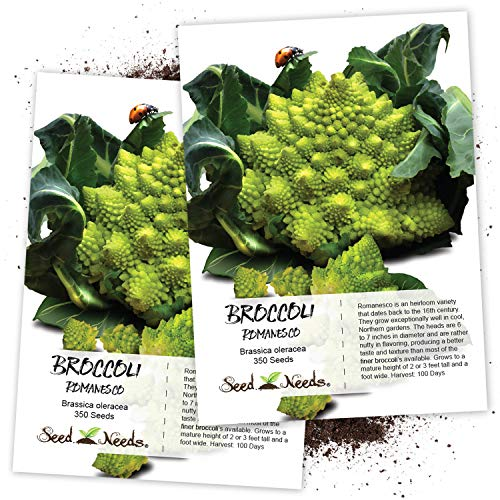 Seed Needs, Romanesco Broccoli (Brassica oleracea)...