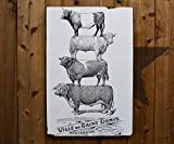 Bull Stack: 24x36'' - Salvaged Wood Wall Decor - Handmade in Sonoma Valley, CA - Perfect for Home or Office - Rue Sonoma Original Design