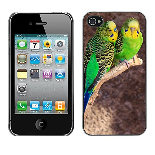 Premio Sottile Slim Cassa Custodia Case Cover Shell // F00011482 oiseau // Apple iPhone 4 4S 4G