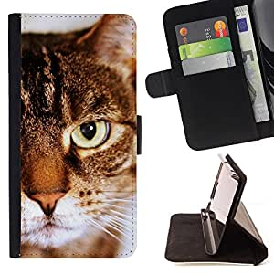 KingStore / Leather Etui en cuir / Samsung Galaxy S4 IV I9500 / Toyger Americano Shorthair gato rayas de Brown