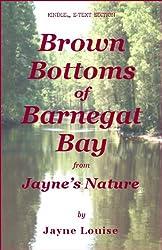Brown Bottoms of Barnegat Bay (Jayne's Nature)