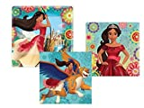 Elena of Avalor Girl Birthday Party Supplies for 16 Includes Plates and Napkins