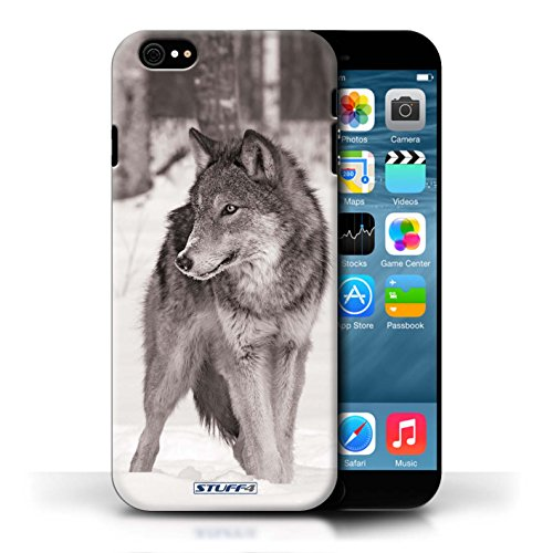 Hülle Case für Apple iPhone 6/6S / Wolf Entwurf / Zoo-Tiere Collection