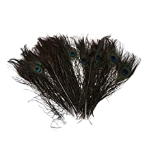 SODIAL(R) 50pcs Natural Peacock Tail Feathers (Big Eyed) about 26-30cm