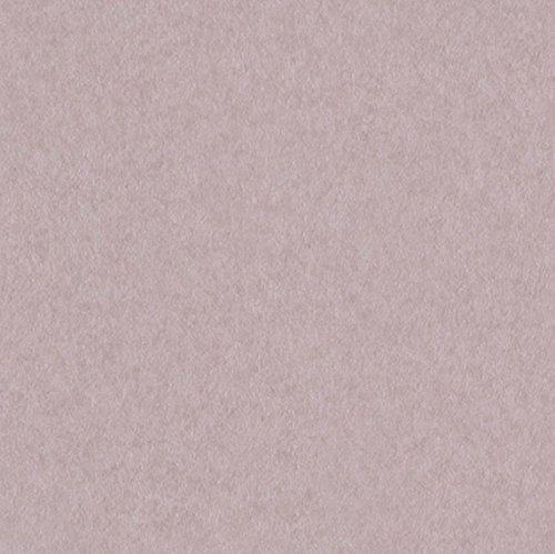 サンゲツ 壁紙26m キッズ  パープル ファミリア&ポップ FE-4005 B06XNJSYZT 26m|パープル
