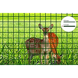 V Protek Ultimate Tomato Cage Heavy Duty 11 Gauge 5ft-Hx98ft-L PVC Coated Wire Mesh Fence,Poultry Netting Gutter Guards,Backyard Rabbit Fencing, 2.4 Opening , Hunter Green