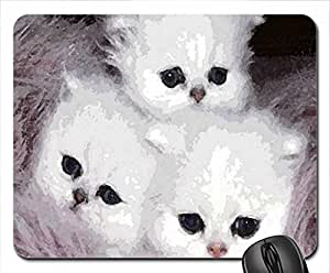 3 fluffy kittens for my friend setareh Mouse Pad, Mousepad (Cats Mouse Pad, 10.2 x 8.3 x 0.12 inches)