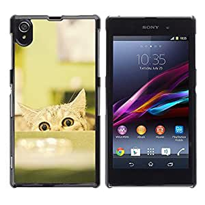 Jordan Colourful Shop - Funny Cat Eyes Pet Mischief For Sony Xperia Z1 L39 Personalizado negro cubierta de la caja de pl????stico