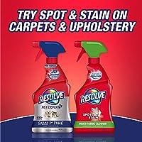 Solución Resolve Carpet Steam Cleaner, Botella de 48 fl oz