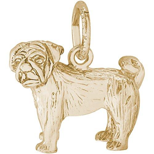Gold Pug Dog Charm (Rembrandt Charms 14K Yellow Gold Pug Dog Charm on a 14K Yellow Gold Rope Chain Necklace, 16