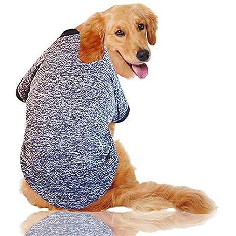 Steve_Eden_TM Abrigo y chaqueta para perro - Ropa para perros ...