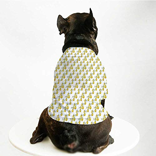 (YOLIYANA Nature Cute Pet Suit,Lemon Tree Branches Agriculture Kitchen Lemonade Citrus Figure Graphic Art for Small Medium Large Size Dogs Cats,S)