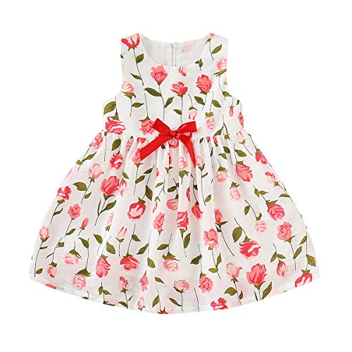 Toddler Baby Girl Rose Printed Floral Bowknot Dress Spring Summer Princess Dress Outfits (Floral, 2-3 T) -