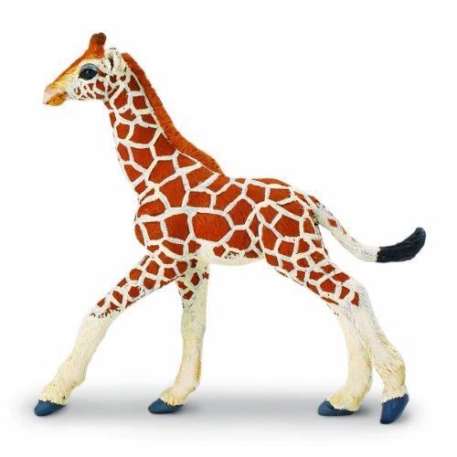 Safari Wildlife Giraffe (Safari Ltd  Wild Wildlife Reticulated Giraffe Baby)
