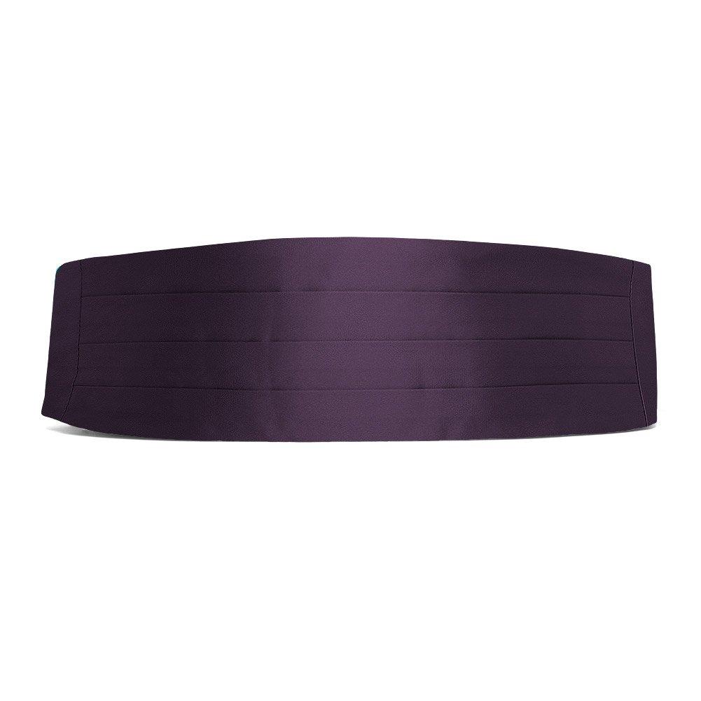 TieMart Eggplant Purple Cummerbund AC00CM-1095