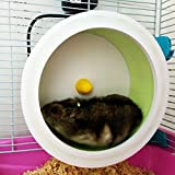 Sometime Hamster Exercise Running Wheels 6inch,DIY Run-About Exercise Ball,Cute Color