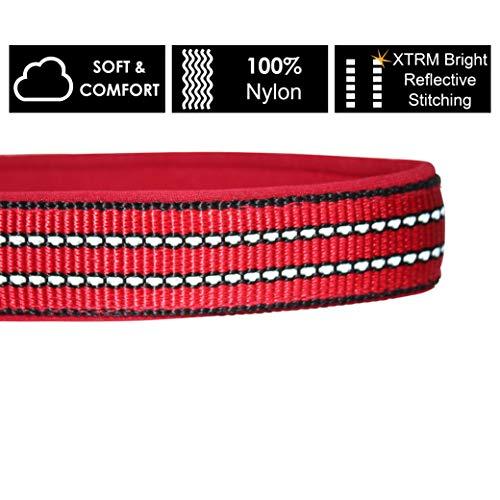 Kruz Heavy Duty O-Ring Reflective Dog Collar for Small, Medium, Large Dogs - KZV006 - Soft Comfortable Neoprene Padding - 100% Nylon Durable, Adjustable Pet Collar - Walking, Running, Training