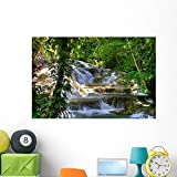 Jamaica Dunn River Waterfalls Wall Mural by Wallmonkeys Peel and Stick Graphic (48 in W x 32 in H) WM126034