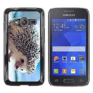 Caucho caso de Shell duro de la cubierta de accesorios de protección BY RAYDREAMMM - Samsung Galaxy Ace 4 G313 SM-G313F - The Friendly Hedgehog