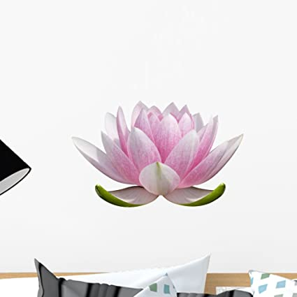 Amazon Wallmonkeys On White Lotus Flower Wall Decal Peel And