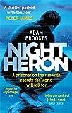 Night Heron (Philip Mangan 1)