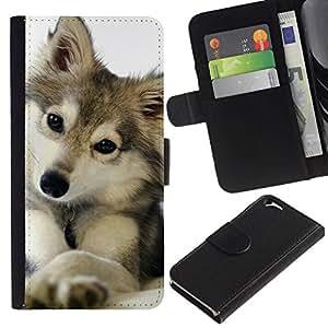 All Phone Most Case / Oferta Especial Cáscara Funda de cuero Monedero Cubierta de proteccion Caso / Wallet Case for Apple Iphone 6 // lindo cachorro de lobo invierno nieve perro mascota