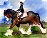 Clydesdale Under Saddle Horse Portrait Matted Art Print - 5 in x 7 in Design - 8 in x 10 in Matted