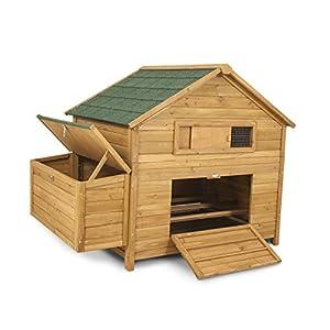 Chicken Coop 8-10