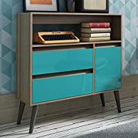 Manhattan Comfort Gota Single Door Console Table in Oak Aqua Gray