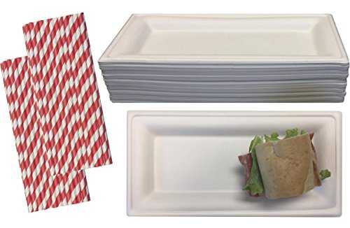 Outside-the-Box-Papers-100-Biodegradable-100-Compostable-BagasseWheat-Fiber-Rectangle-Party-Plates-40-Pk-with-50-Bonus-Striped-Straws