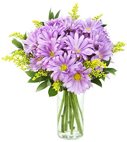 KaBloom Lavender Flower Fields Bouquet of Purple Daisy Poms, Yellow Solidago Aster and Lush Greens with Vase