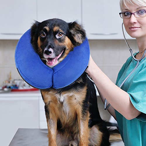 ONSON Protective Inflatable Cone Collar for Dogs and Cats, Large (How To Make Nether)