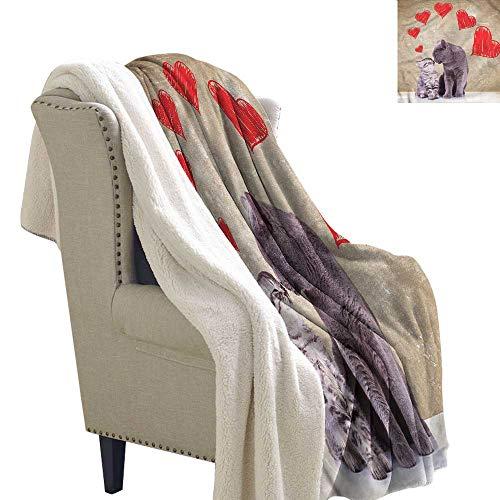Jaydevn Cat Lightweight Blanket Kittens with Hand Drawn Hearts Print Summer Quilt Comforter 60x32 Inch