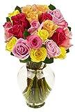 Benchmark Bouquets 2 Dozen Rainbow Roses, With Vase Deal