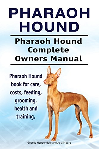 Pharaoh Hound Dog. Pharaoh Hound dog book for costs, care, feeding, grooming, training and health. Pharaoh Hound dog Owners Manual. 1