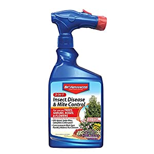 BioAdvanced 701287A Miticide Pesticide Fungicide 3-in-1 Insect, Disease and Mite Control, 32 oz, Ready-to-Spray