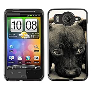 Vortex Accessory Carcasa Protectora Para HTC DESIRE HD - Plott Puppy Cane Corso Retriever -