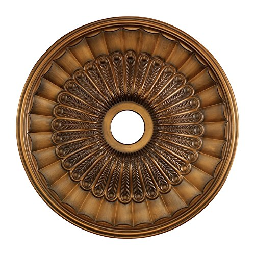 ELK Lighting M1007AB Hillspire Medallion 24 Inch In Antique Bronze ()