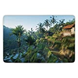 Bathroom Bath Rug Kitchen Floor Mat Carpet,Balinese Decor,Terrace Rice Fields Palm Trees Traditional Farmhouse Morning Sunrise View Bali Indonesia,Green,Flannel Microfiber Non-slip Soft Absorbent