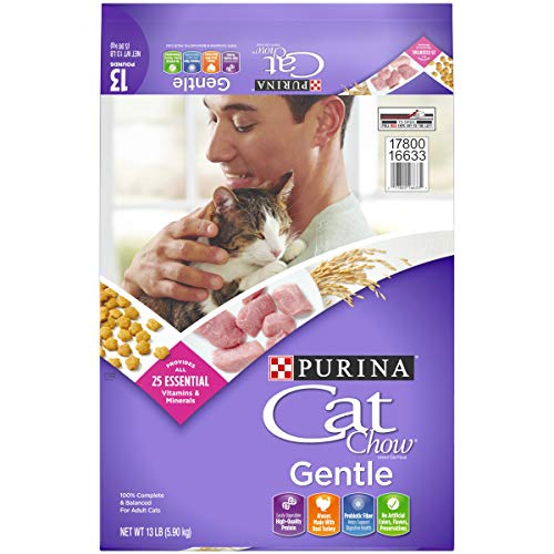 Purina Cat Chow Sensitive Stomach Dry Cat Food, Gentle - 13 lb. Bag