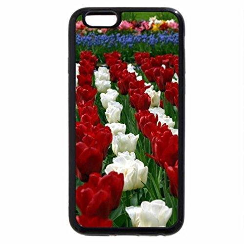 iPhone 6S / iPhone 6 Case (Black) a corner of paradise