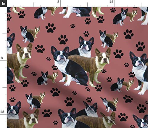 Boston Terrier Puppy Fabric - And Pawprints Pet Decor Dog Paw Prints Animals Bostons Seamless Pattern Print on Fabric by the Yard - Modern Jersey - for Fashion Apparel Clothing with 4-Way Stretch