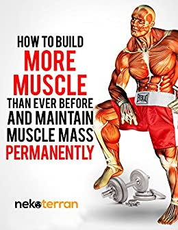 how to build muscle and mantain it