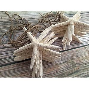 514K-i7s52L._SS300_ Beachy Starfish and Seashell Garlands