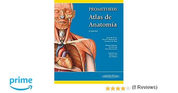 Prometheus. Atlas De Anatomía: Amazon.es: Anne M. Gilroy, Brian R ...