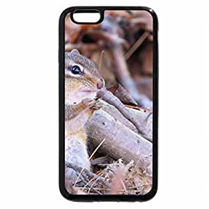 iPhone 6S Plus Case, iPhone 6 Plus Case, Spring and No Nuts!
