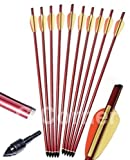 10 x 16' Anglo Arms Alloy Aluminum Crossbow Xbow Bolts Arrows With Steel Tip End