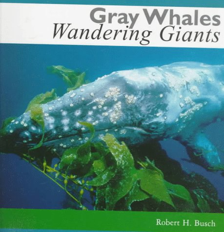 Gray Whales: Wandering Giants Paperback – March 1, 1998 Robert Busch Orca Book Pub 1551431149 Animals - Mammals